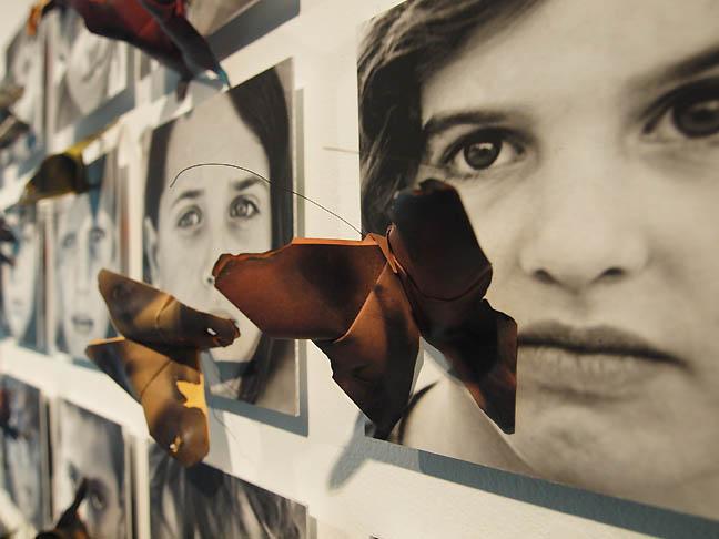 DACA_kids_butterflies_sm.jpg
