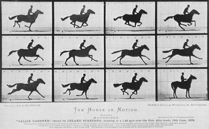 EMM_-horse1887.jpg