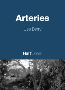 HD_Arteries.jpg