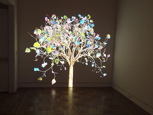 Kamp_tree_PAM_sm.jpg