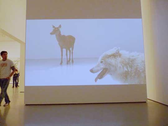 MoMA_Wolves_SM.jpg