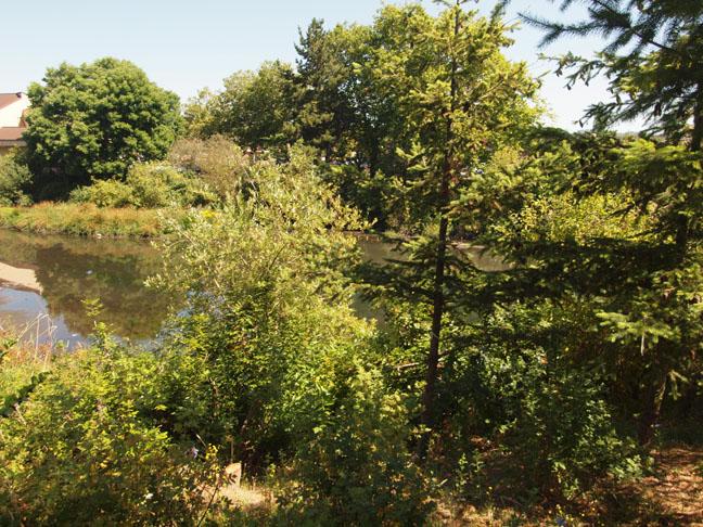 PRCTA_wetlands.jpg