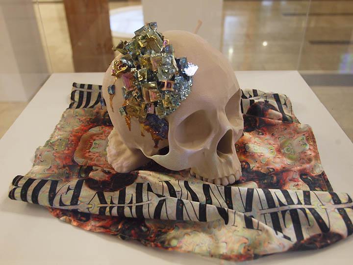 Tabitha_skull_sm.jpg