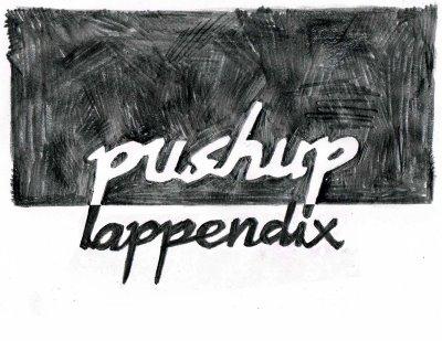 pushup-appendix.jpg