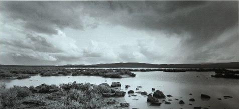 tnt-006-palomino_lake_malheur_co._oregon_breaking_light.jpg